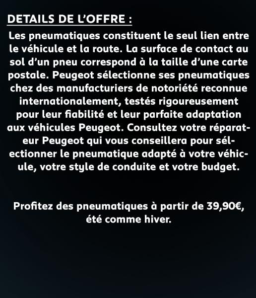 REVISION_pneu